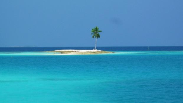 ONE PALM ISLAND