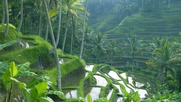 8. BALI (INDONESIA)