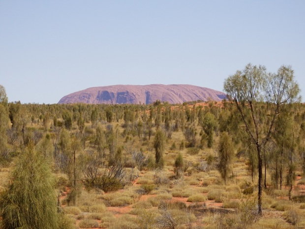 VIEW OF ULURU FROM TENT
