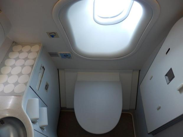 BUSINESS CLASS LAVATORY (WITH A VIEW)