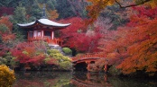 1. EXPLORE KYOTO'S ANCIENT SITES
