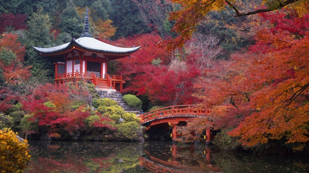 EXPLORE KYOTO'S ANCIENT SITES