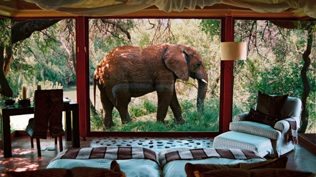 10. SANCTUARY MAKANYANE SAFARI LODGE, NORTH WEST PROVINCE