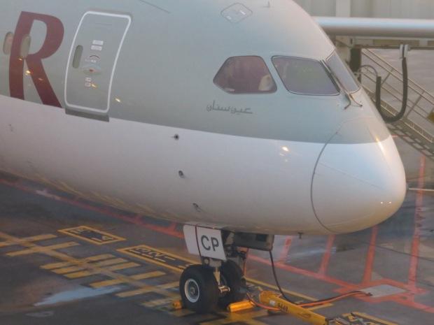 QATAR AIRWAYS B787 DREAMLINER